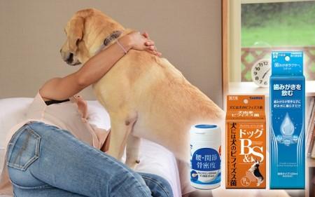日本介助犬福祉協会 応援セット B