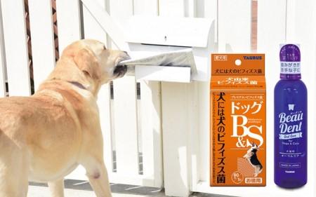 日本介助犬福祉協会 応援セット C