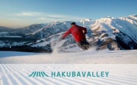 HAKUBA VALLEY 10スキー場共通シーズンパス1枚