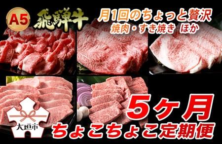 A5飛騨牛 定期便 5カ月ちょこちょこお届け(焼肉・すき焼き ほか)