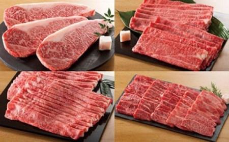 飛騨牛食べ比べコース (全4回コース)