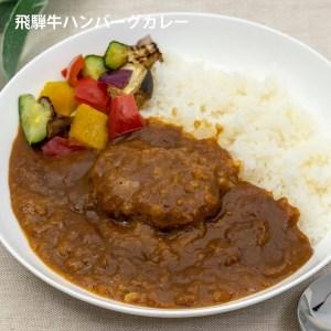 飛騨牛ハンバーグ入りカレー1袋×10 (10食)[C0073]