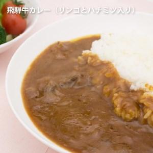 りんごとはちみつ入り飛騨牛カレー 1袋×10 (10食)[C0074]