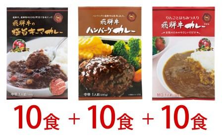 3種類の飛騨牛カレー 1袋×10×3種類 (30食)[G0022]