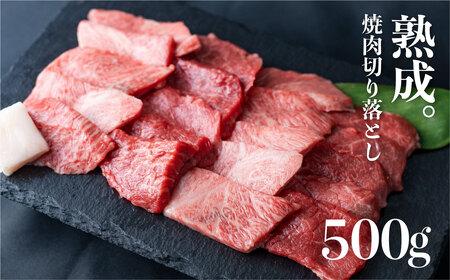 飛騨の牧場で育った熟成飛騨牛『山勇牛』焼肉用ミックス500g[D0025]