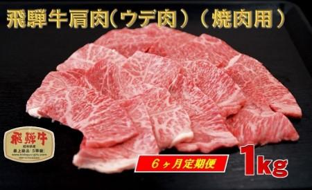 「6ヶ月定期便」 A4等級以上 飛騨牛肩肉(ウデ肉) (焼肉用) 1kg