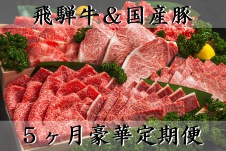 【5ヶ月定期便】 5等級飛騨牛と国産豚肉セット
