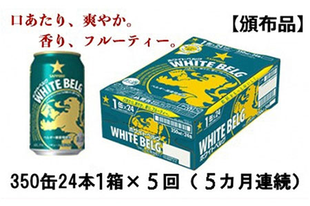 【頒布会】ホワイトベルグ350ml缶24本1箱×5回(5カ月連続)