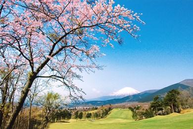 東富士C・Cゴルフプレー利用券 1枚